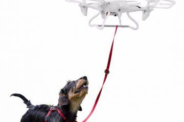 Portare a spasso il cane? Ci pensa il drone
