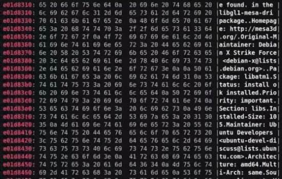 Meltdown e Spectre bug dei sistemi di sicurezza dei processori