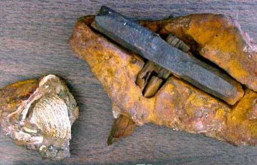 Martello di oltre 100 milioni di anni fa