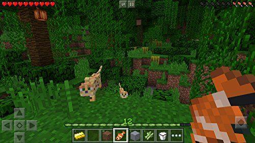 Minecraft il mondo a cubi