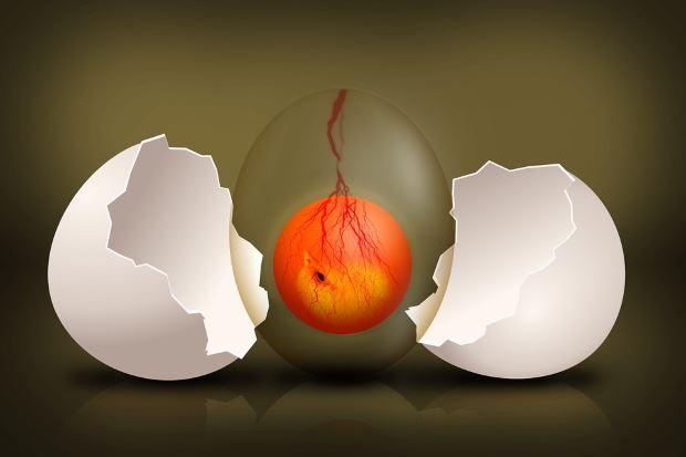 Studio dell'origine della vita – La generazione spontanea