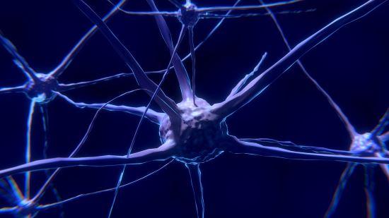 Reti neurali - Neurone di un cervello