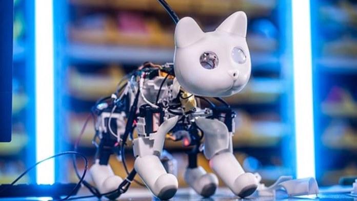 Gatto robot ad altissima tecnologia