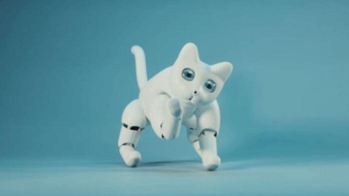 MarsCat il gatto robot